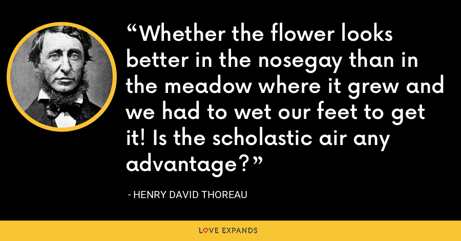 Whether the flower looks better in the nosegay than in the meadow where it grew and we had to wet our feet to get it! Is the scholastic air any advantage? - Henry David Thoreau