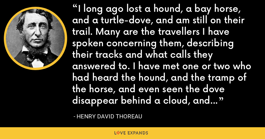 I long ago lost a hound, a bay horse, and a turtle-dove, and am still on their trail. Many are the travellers I have spoken concerning them, describing their tracks and what calls they answered to. I have met one or two who had heard the hound, and the tramp of the horse, and even seen the dove disappear behind a cloud, and they seemed as anxious to recover them as if they had lost them themselves. - Henry David Thoreau