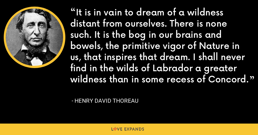 It is in vain to dream of a wildness distant from ourselves. There is none such. It is the bog in our brains and bowels, the primitive vigor of Nature in us, that inspires that dream. I shall never find in the wilds of Labrador a greater wildness than in some recess of Concord. - Henry David Thoreau