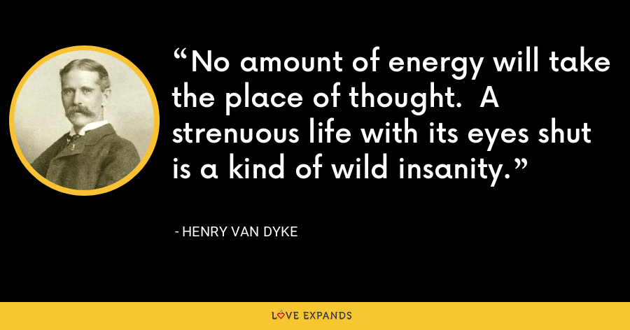 No amount of energy will take the place of thought.  A strenuous life with its eyes shut is a kind of wild insanity. - Henry Van Dyke