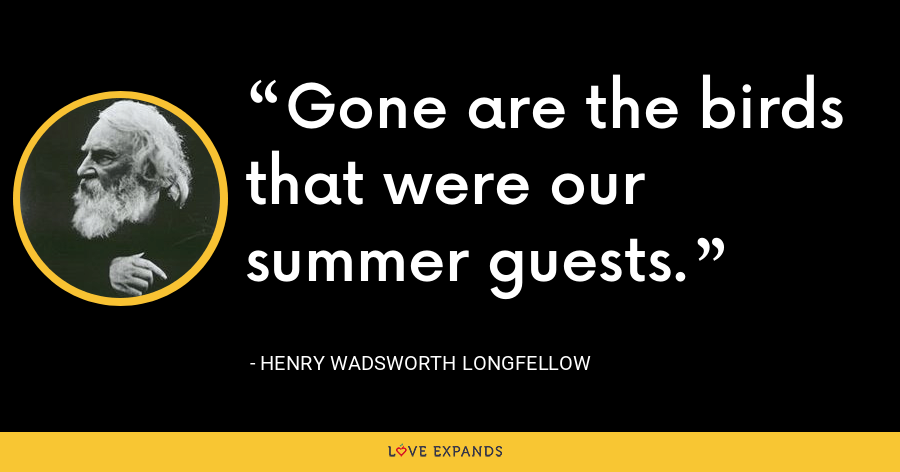 Gone are the birds that were our summer guests. - Henry Wadsworth Longfellow