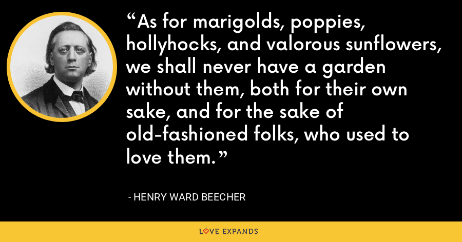 As for marigolds, poppies, hollyhocks, and valorous sunflowers, we shall never have a garden without them, both for their own sake, and for the sake of old-fashioned folks, who used to love them. - Henry Ward Beecher