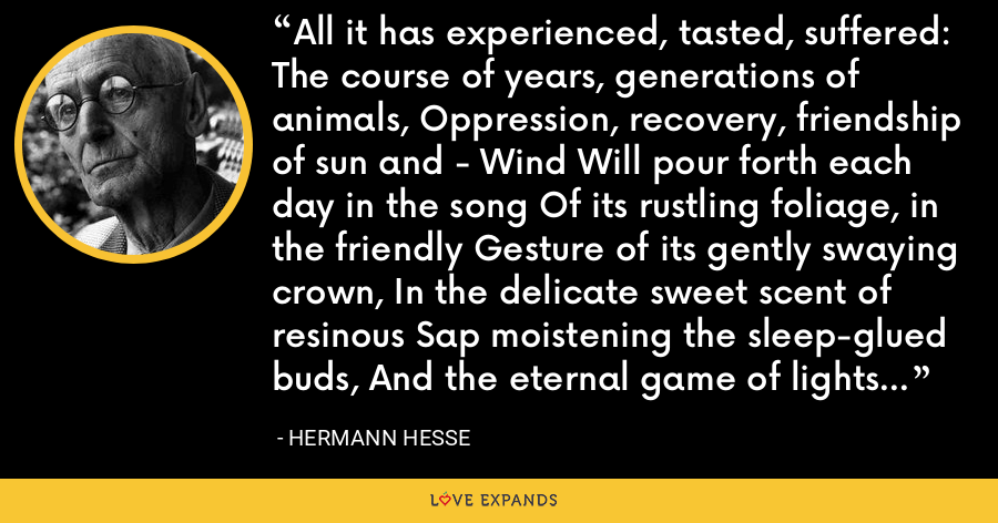 All it has experienced, tasted, suffered: The course of years, generations of animals, Oppression, recovery, friendship of sun and - Wind Will pour forth each day in the song Of its rustling foliage, in the friendly Gesture of its gently swaying crown, In the delicate sweet scent of resinous Sap moistening the sleep-glued buds, And the eternal game of lights and Shadows it plays with itself, content. - Hermann Hesse