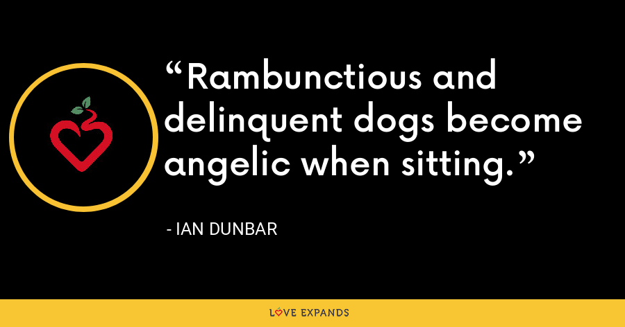 Rambunctious and delinquent dogs become angelic when sitting. - Ian Dunbar