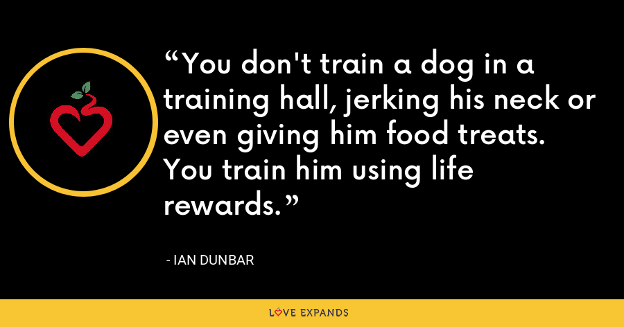 You don't train a dog in a training hall, jerking his neck or even giving him food treats. You train him using life rewards. - Ian Dunbar