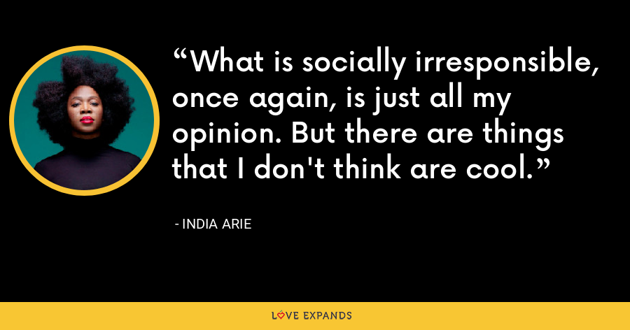What is socially irresponsible, once again, is just all my opinion. But there are things that I don't think are cool. - India Arie