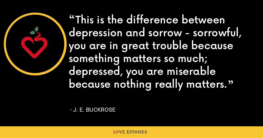 This is the difference between depression and sorrow - sorrowful, you are in great trouble because something matters so much; depressed, you are miserable because nothing really matters. - J. E. Buckrose