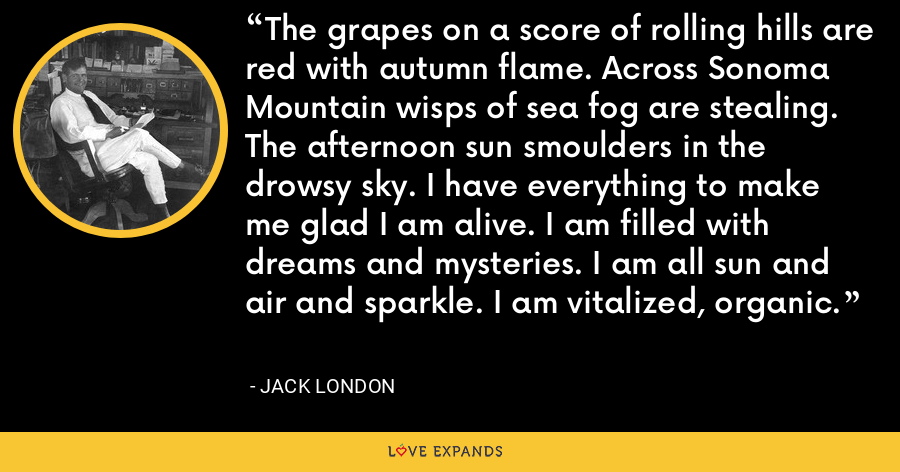 The grapes on a score of rolling hills are red with autumn flame. Across Sonoma Mountain wisps of sea fog are stealing. The afternoon sun smoulders in the drowsy sky. I have everything to make me glad I am alive. I am filled with dreams and mysteries. I am all sun and air and sparkle. I am vitalized, organic. - Jack London