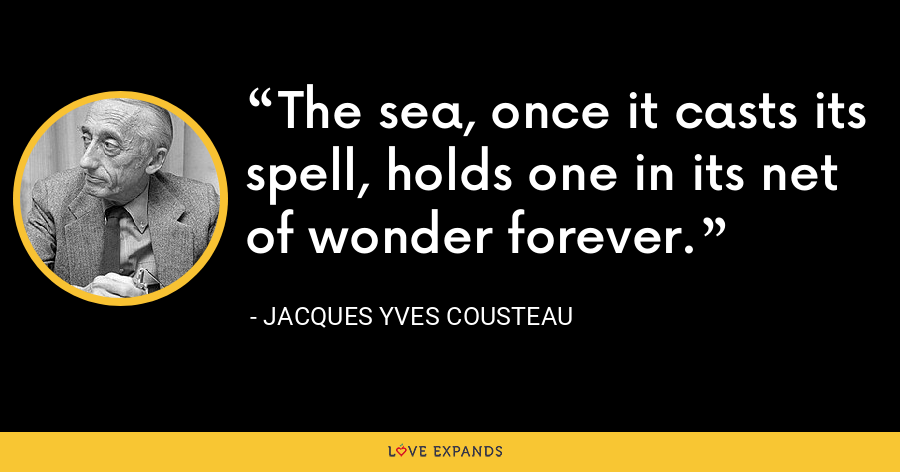 The sea, once it casts its spell, holds one in its net of wonder forever. - Jacques Yves Cousteau