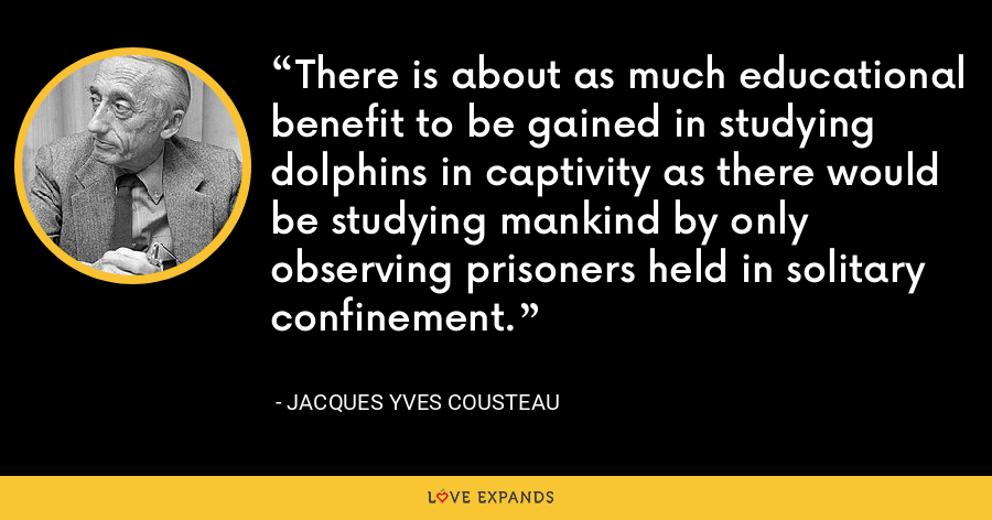 There is about as much educational benefit to be gained in studying dolphins in captivity as there would be studying mankind by only observing prisoners held in solitary confinement. - Jacques Yves Cousteau