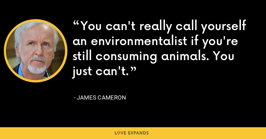 You can't really call yourself an environmentalist if you're still consuming animals. You just can't. - James Cameron