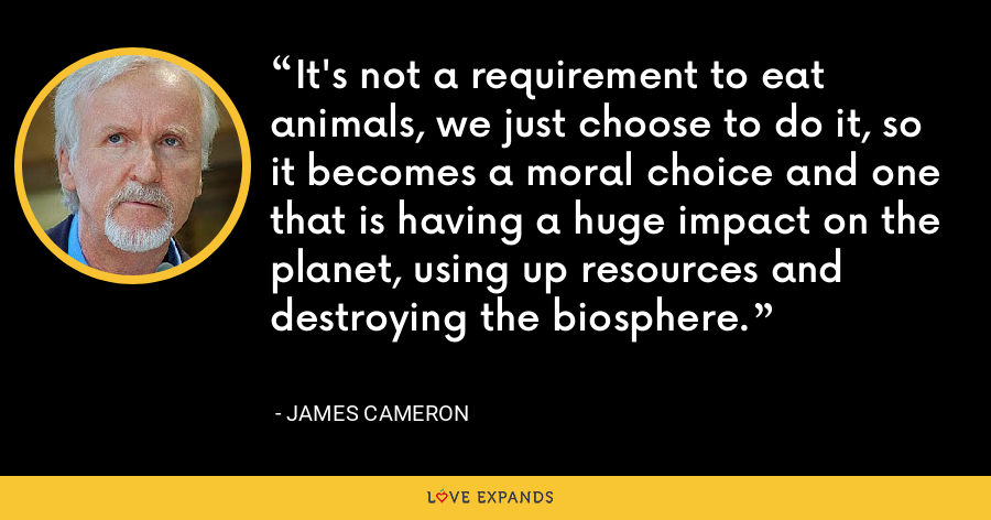 It's not a requirement to eat animals, we just choose to do it, so it becomes a moral choice and one that is having a huge impact on the planet, using up resources and destroying the biosphere. - James Cameron