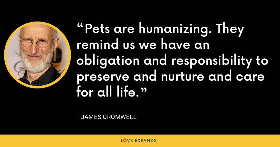 Pets are humanizing. They remind us we have an obligation and responsibility to preserve and nurture and care for all life. - James Cromwell