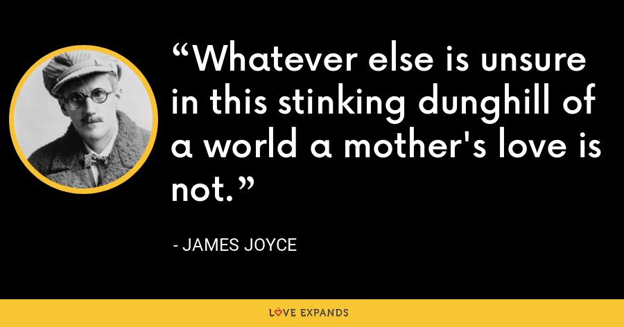 Whatever else is unsure in this stinking dunghill of a world a mother's love is not. - James Joyce