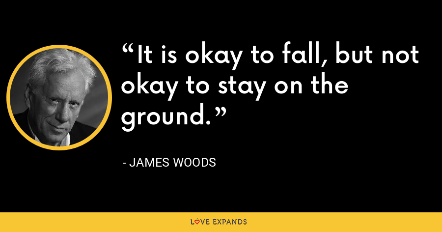 It is okay to fall, but not okay to stay on the ground. - James Woods