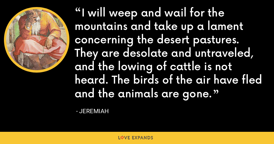 I will weep and wail for the mountains and take up a lament concerning the desert pastures. They are desolate and untraveled, and the lowing of cattle is not heard. The birds of the air have fled and the animals are gone. - Jeremiah