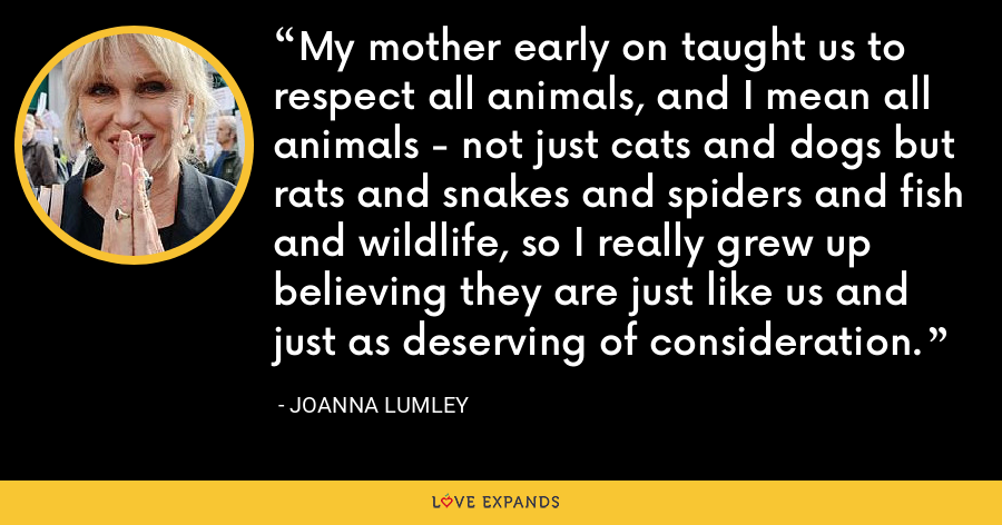 My mother early on taught us to respect all animals, and I mean all animals - not just cats and dogs but rats and snakes and spiders and fish and wildlife, so I really grew up believing they are just like us and just as deserving of consideration. - Joanna Lumley