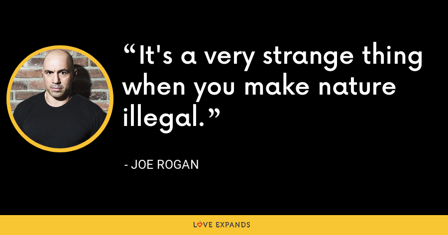 It's a very strange thing when you make nature illegal. - Joe Rogan