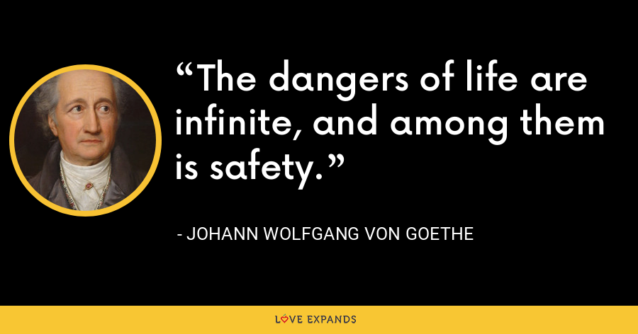The dangers of life are infinite, and among them is safety. - Johann Wolfgang von Goethe