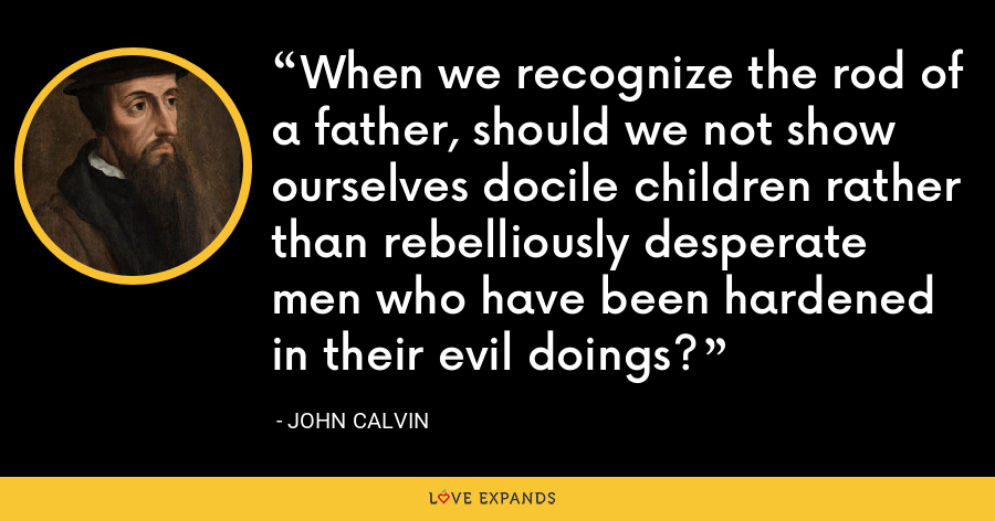 When we recognize the rod of a father, should we not show ourselves docile children rather than rebelliously desperate men who have been hardened in their evil doings? - John Calvin