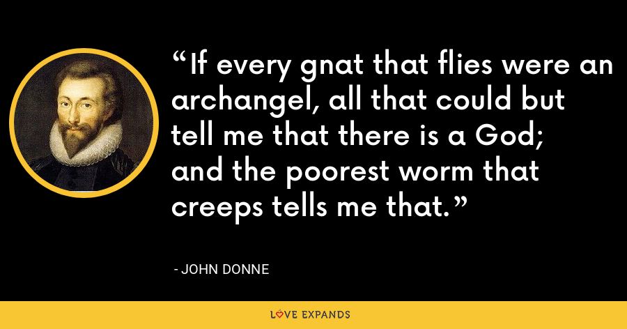 If every gnat that flies were an archangel, all that could but tell me that there is a God; and the poorest worm that creeps tells me that. - John Donne