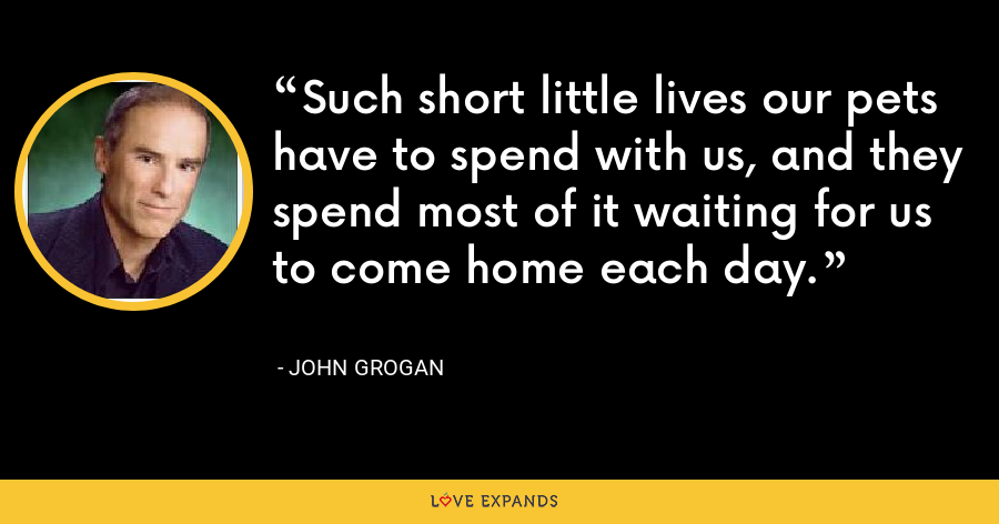 Such short little lives our pets have to spend with us, and they spend most of it waiting for us to come home each day. - John Grogan