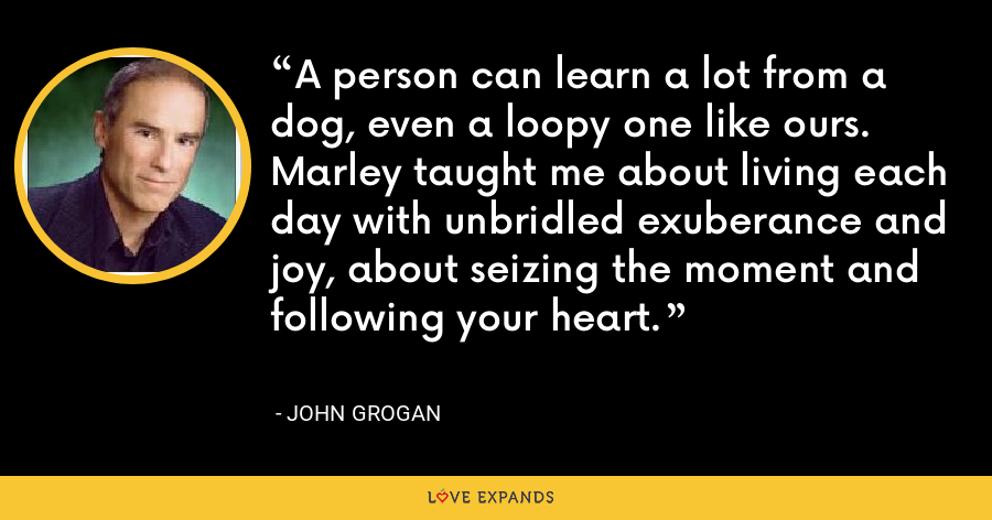 A person can learn a lot from a dog, even a loopy one like ours. Marley taught me about living each day with unbridled exuberance and joy, about seizing the moment and following your heart. - John Grogan