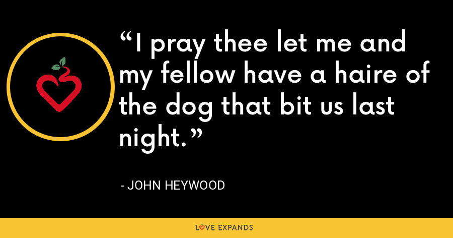 I pray thee let me and my fellow have a haire of the dog that bit us last night. - John Heywood