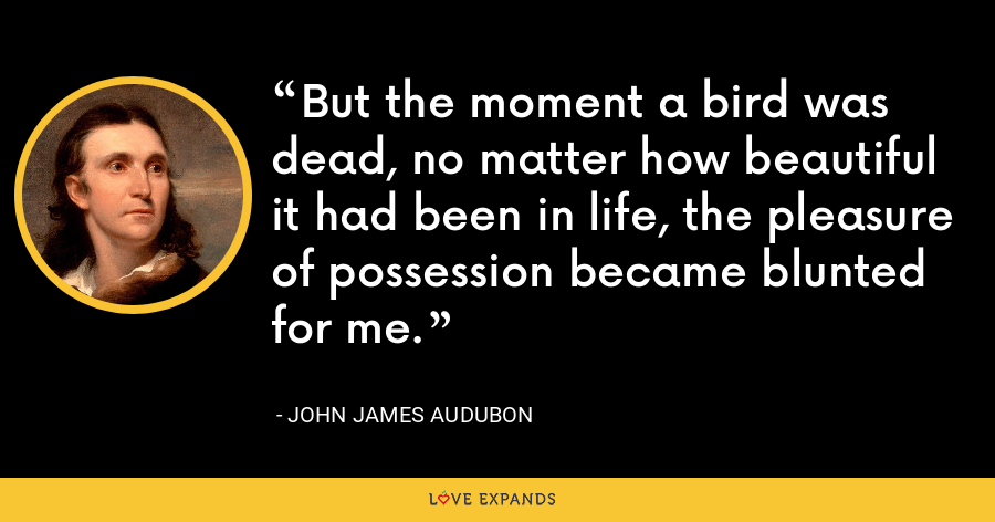 But the moment a bird was dead, no matter how beautiful it had been in life, the pleasure of possession became blunted for me. - John James Audubon