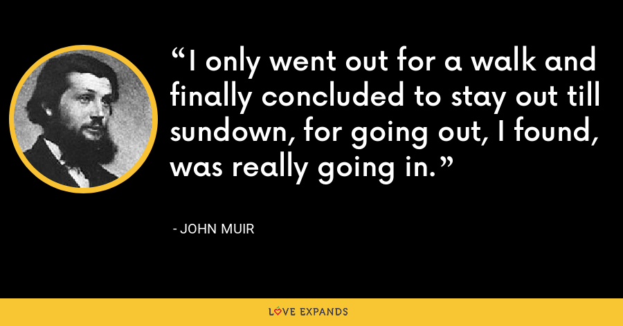 I only went out for a walk and finally concluded to stay out till sundown, for going out, I found, was really going in. - John Muir
