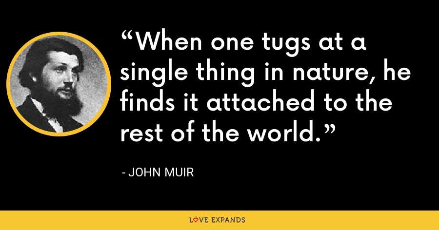 When one tugs at a single thing in nature, he finds it attached to the rest of the world. - John Muir