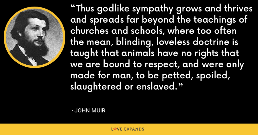 Thus godlike sympathy grows and thrives and spreads far beyond the teachings of churches and schools, where too often the mean, blinding, loveless doctrine is taught that animals have no rights that we are bound to respect, and were only made for man, to be petted, spoiled, slaughtered or enslaved. - John Muir