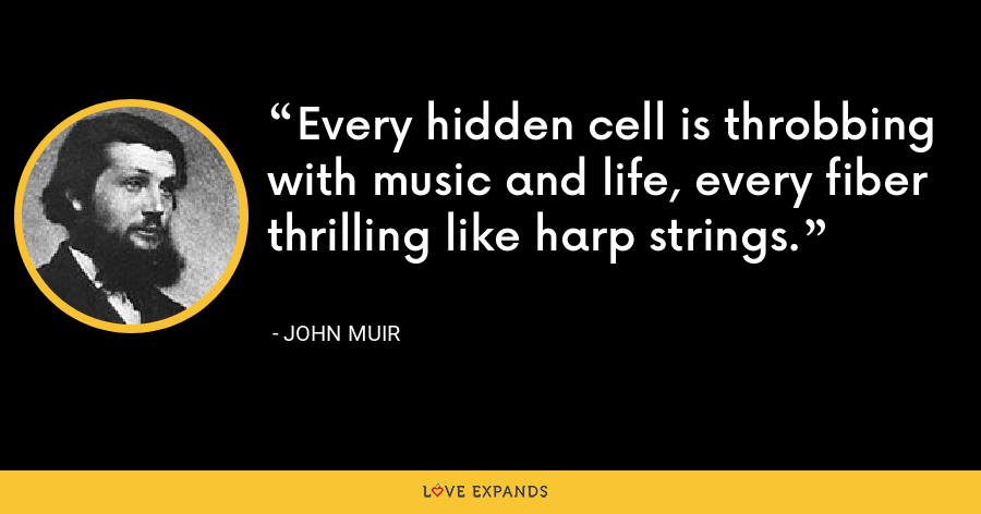 Every hidden cell is throbbing with music and life, every fiber thrilling like harp strings. - John Muir