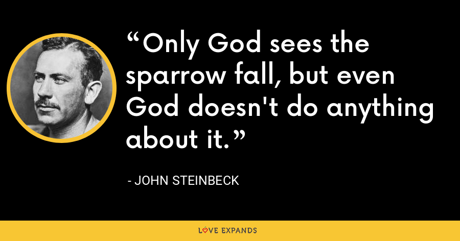 Only God sees the sparrow fall, but even God doesn't do anything about it. - John Steinbeck