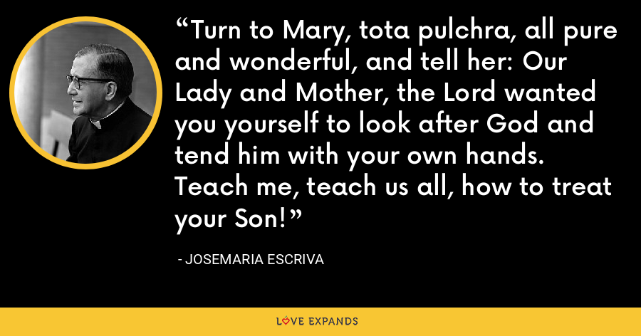 Turn to Mary, tota pulchra, all pure and wonderful, and tell her: Our Lady and Mother, the Lord wanted you yourself to look after God and tend him with your own hands. Teach me, teach us all, how to treat your Son! - Josemaria Escriva