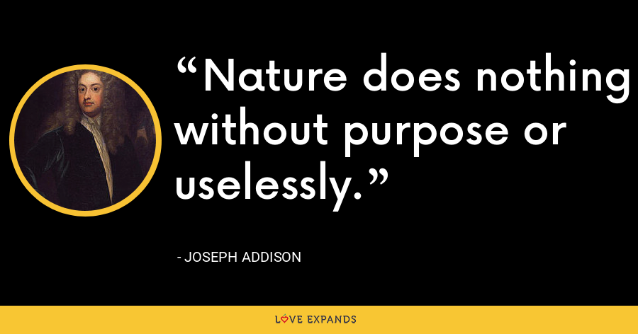Nature does nothing without purpose or uselessly. - Joseph Addison