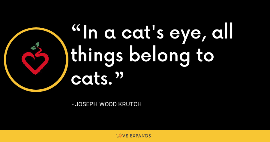 In a cat's eye, all things belong to cats. - Joseph Wood Krutch