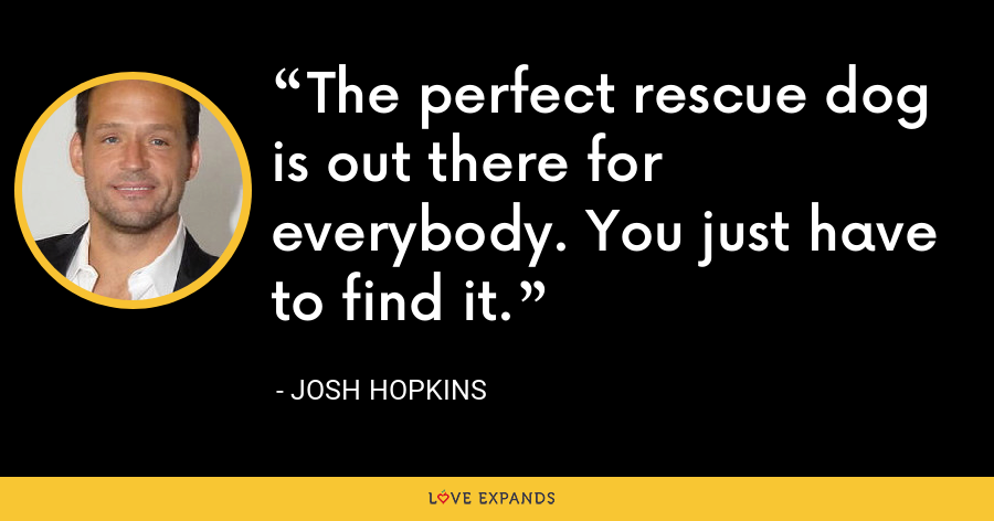 The perfect rescue dog is out there for everybody. You just have to find it. - Josh Hopkins