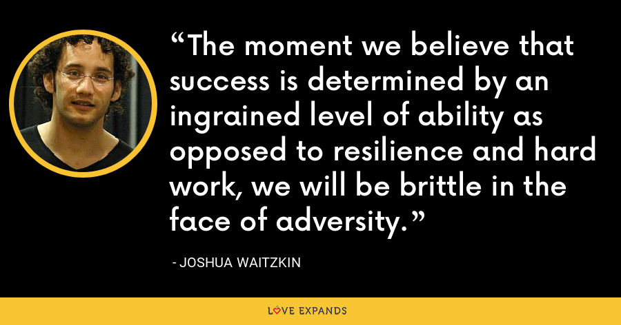 The moment we believe that success is determined by an ingrained level of ability as opposed to resilience and hard work, we will be brittle in the face of adversity. - Joshua Waitzkin