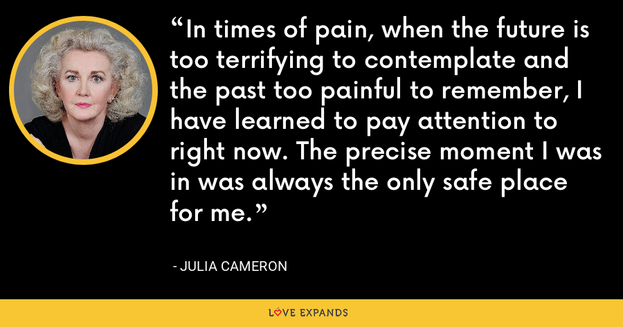 In times of pain, when the future is too terrifying to contemplate and the past too painful to remember, I have learned to pay attention to right now. The precise moment I was in was always the only safe place for me. - Julia Cameron