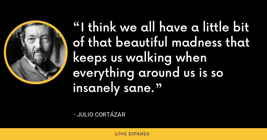 I think we all have a little bit of that beautiful madness that keeps us walking when everything around us is so insanely sane. - Julio Cortázar