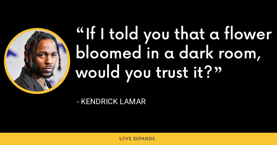 If I told you that a flower bloomed in a dark room, would you trust it? - Kendrick Lamar