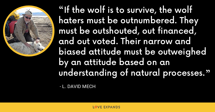 If the wolf is to survive, the wolf haters must be outnumbered. They must be outshouted, out financed, and out voted. Their narrow and biased attitude must be outweighed by an attitude based on an understanding of natural processes. - L. David Mech