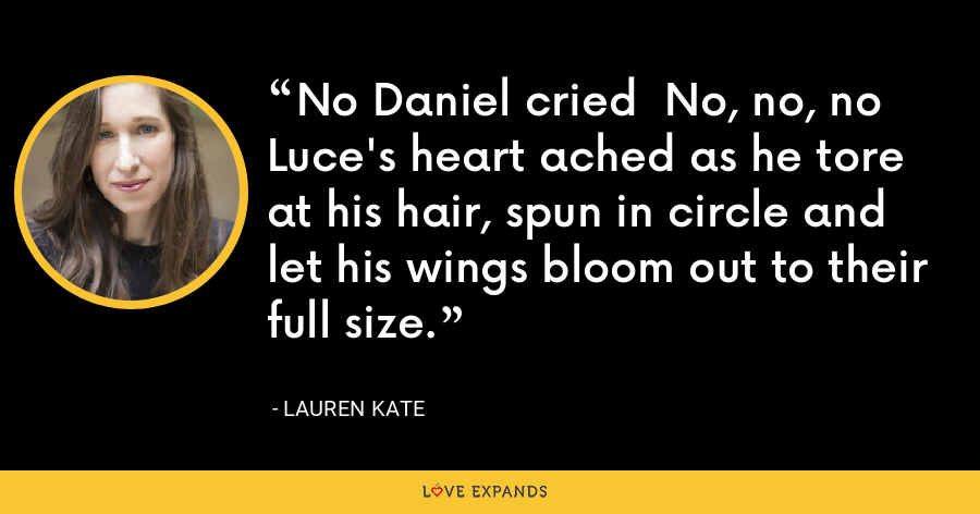 No Daniel cried  No, no, no Luce's heart ached as he tore at his hair, spun in circle and let his wings bloom out to their full size. - lauren kate