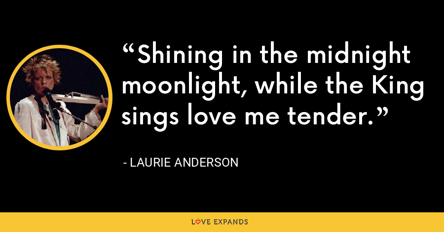 Shining in the midnight moonlight, while the King sings love me tender. - Laurie Anderson
