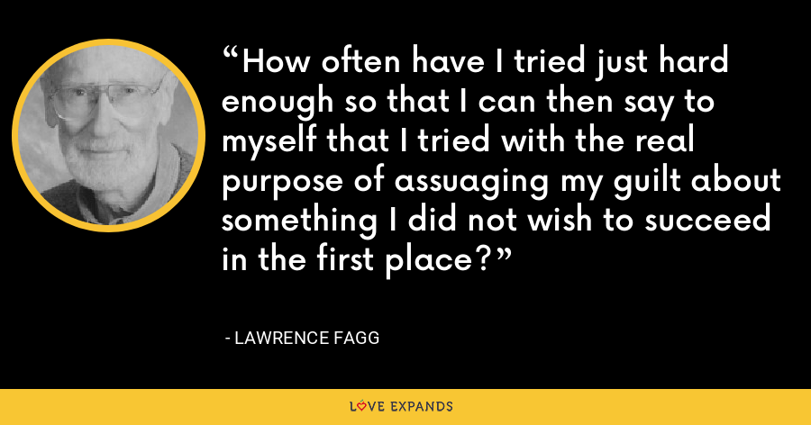 How often have I tried just hard enough so that I can then say to myself that I tried with the real purpose of assuaging my guilt about something I did not wish to succeed in the first place? - Lawrence Fagg