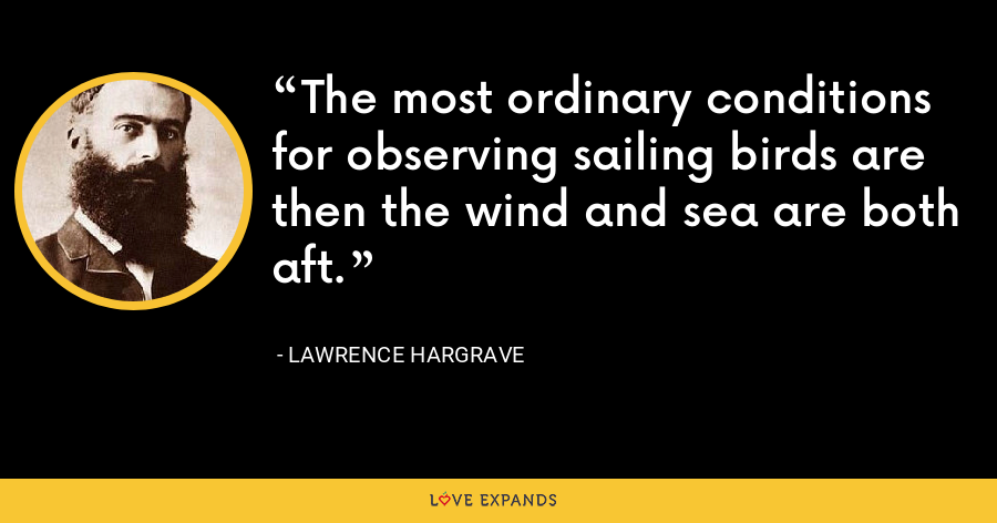 The most ordinary conditions for observing sailing birds are then the wind and sea are both aft. - Lawrence Hargrave