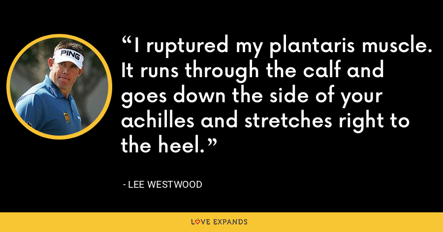 I ruptured my plantaris muscle. It runs through the calf and goes down the side of your achilles and stretches right to the heel. - Lee Westwood