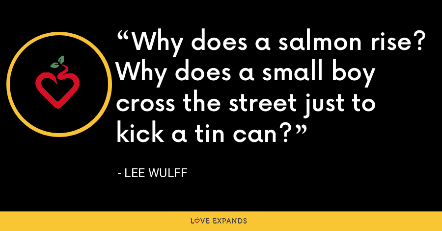 Why does a salmon rise? Why does a small boy cross the street just to kick a tin can? - Lee Wulff