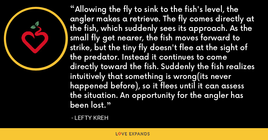 Allowing the fly to sink to the fish's level, the angler makes a retrieve. The fly comes directly at the fish, which suddenly sees its approach. As the small fly get nearer, the fish moves forward to strike, but the tiny fly doesn't flee at the sight of the predator. Instead it continues to come directly toward the fish. Suddenly the fish realizes intuitively that something is wrong(its never happened before), so it flees until it can assess the situation. An opportunity for the angler has been lost. - Lefty Kreh